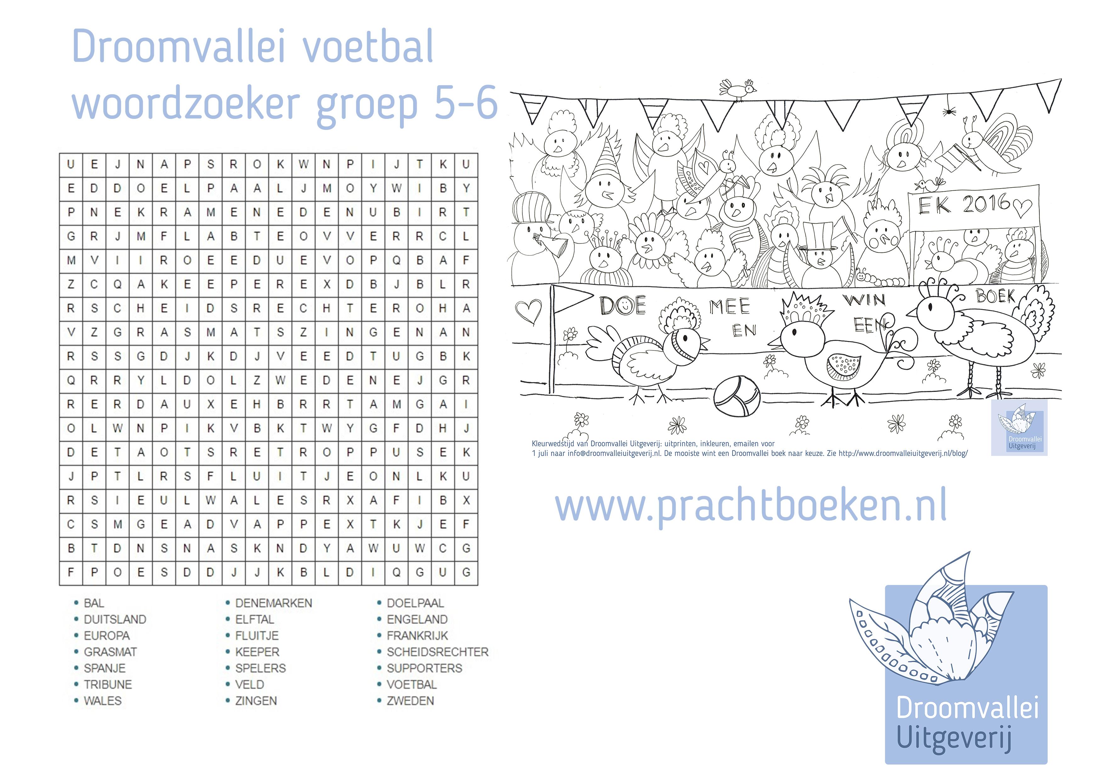 Woordzoeker Groep 5 6 Voetbal Droomvallei Uitgeverij