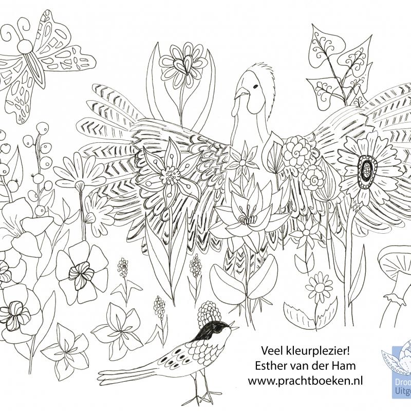 kleurplaat vogel Droomvallei Uitgeverij